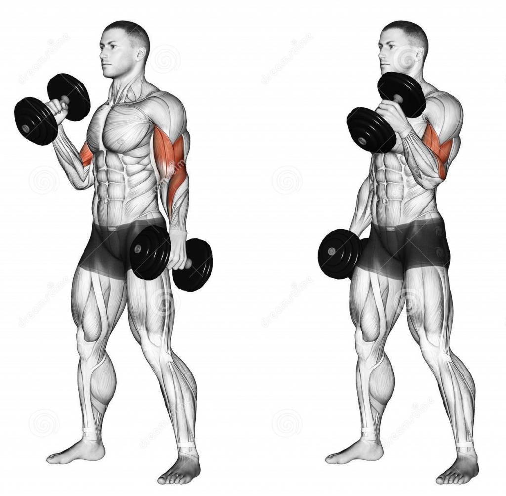 صورة تمرين العضلات , تمارين حصرية للعضلات بدون اثقال