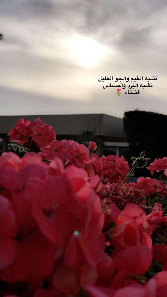 صور اجمل حكمة , صور مكتوب عليها حكم جميلة