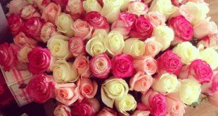 صور باقات زهور , اجمل تذويق لباقات الزهور