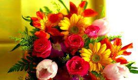 صور زهور جميلة , اجمل انواع الزهور