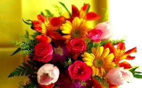 زهور جميلة , اجمل انواع الزهور