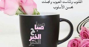 صباح الورد حبيبي , اجمل صور صباح الخير للحبايب