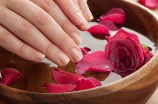 صورة ماء الورد للشعر , ماهي فوائد استخدام ماء الورد للشعر