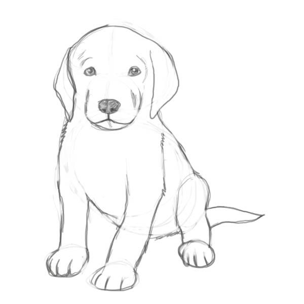 صورة رسومات جميلة وسهلة , رسم سهل للطفل