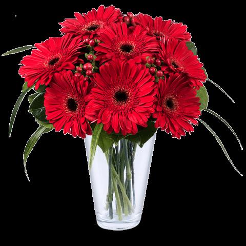 صورة اجمل ورود الحب , احلى زهور العشق