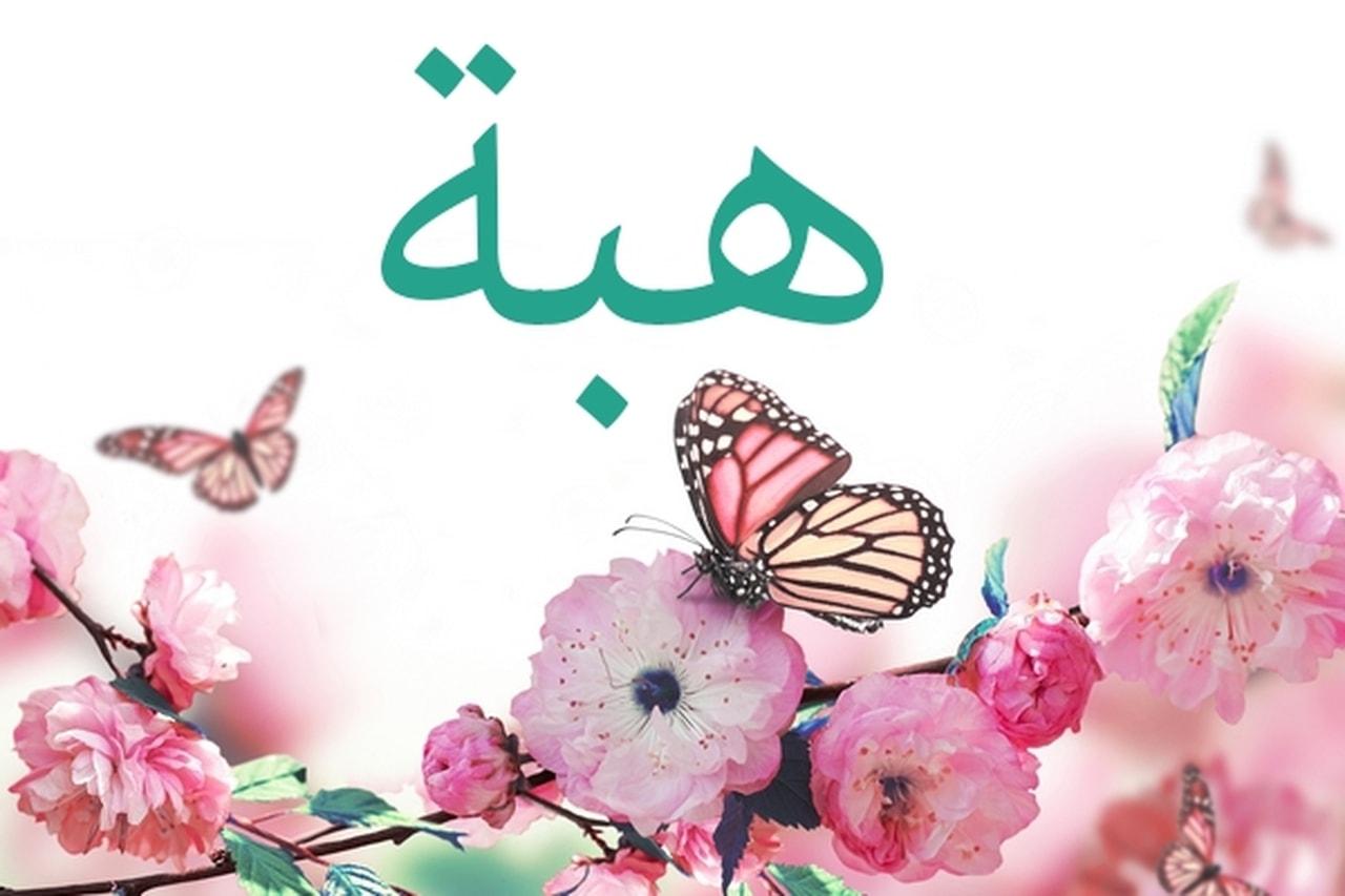 صورة معنى اسم هبة , هبة الاسم الاكثر تسمية