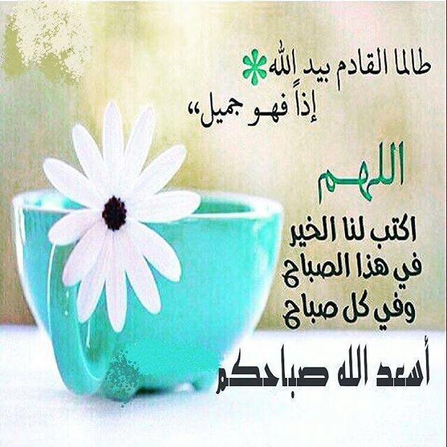 صورة ادعية الصباح والمساء , صور للدعاء في كل صباح و مساء