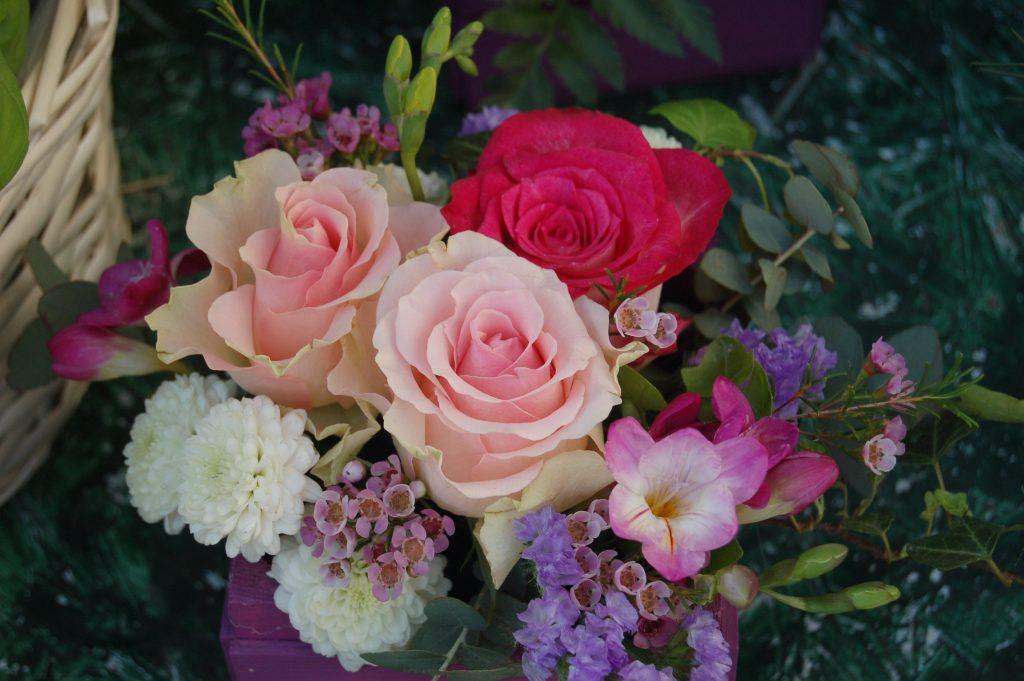 صور صور زهور , صور عليها اجمل الزهور في كل الفصول