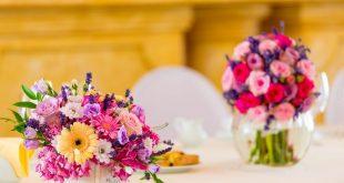 صورة صور زهور , صور عليها اجمل الزهور في كل الفصول