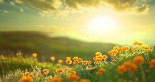 صورة صور صباح الحب , صباح الجمال والحب
