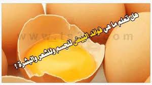 صورة فوائد , فوائد شرب اللبن مع البيض