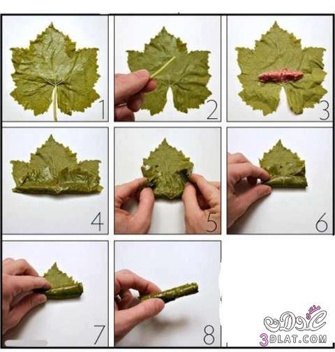 صورة كيفية لف ورق العنب , طريقة مميزة للف ورق العنب