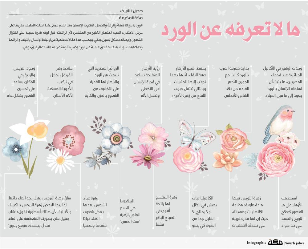 صورة معلومات عن الورد , اعرف جمال الورد
