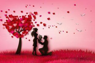 صورة قصيدة حب للحبيب,واو ما اروع قصائد حبك حبيبي