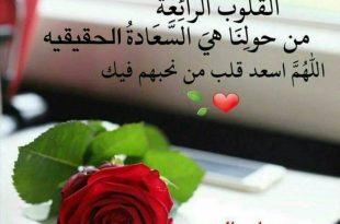 صورة صور حب صباح الخير,لاجمل صور تحكي عن صباح الخير