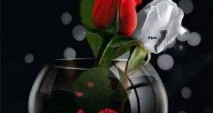 صورة بوستات مساء الخير , اجمل بوستات مساء الخير 👇