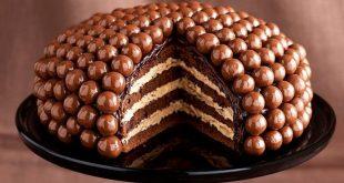 صور تورتات شيكولاته , اجمل تورتة شوكولاتة لعيد الميلاد 😋