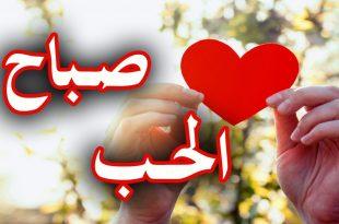 صورة صباح الحب حبيبي, اجمل كلمات تحمل الحب في الصباح