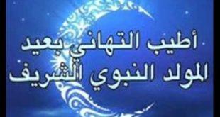 صورة صور عيد المولد , اجمل تهاني المولد النبوي الشريف 👇