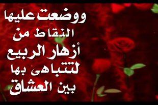 صورة كلمات اهداء للحبيب , احلي واجمد اهداءات للحبيب ♥️