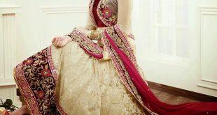 صورة ازياء هندية,موديلات فساتين هنديه