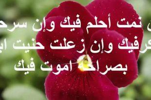 صورة رسائل غرامية,من اجمل كلماتك حبيبي الرائعه