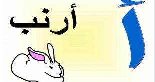 صورة صور بحرف الالف , اسهل حرف يمكن تعلمة