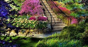 صورة اجمل حدائق العالم ,حدائق لاراحة العين و النفس