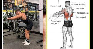 صورة لجسم مثالى مثل الرياضيين , اقوى تمارين الظهر