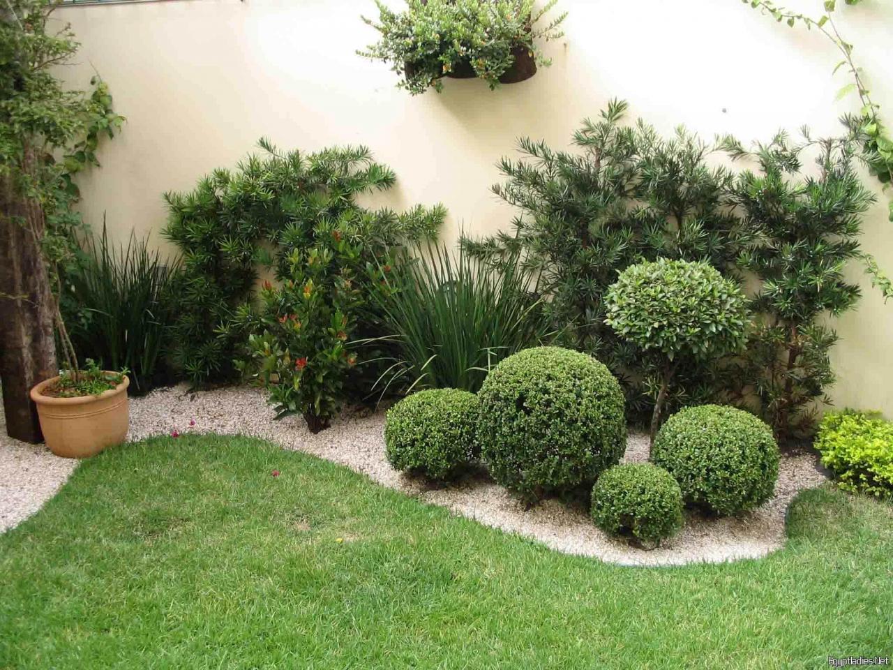 صورة تنسيق حدائق الخرج , شركة مناسبة لحديقة رائعة 7968 4