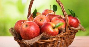 صورة التفاح و دلالات الخير ,تفسير حلم اكل التفاح