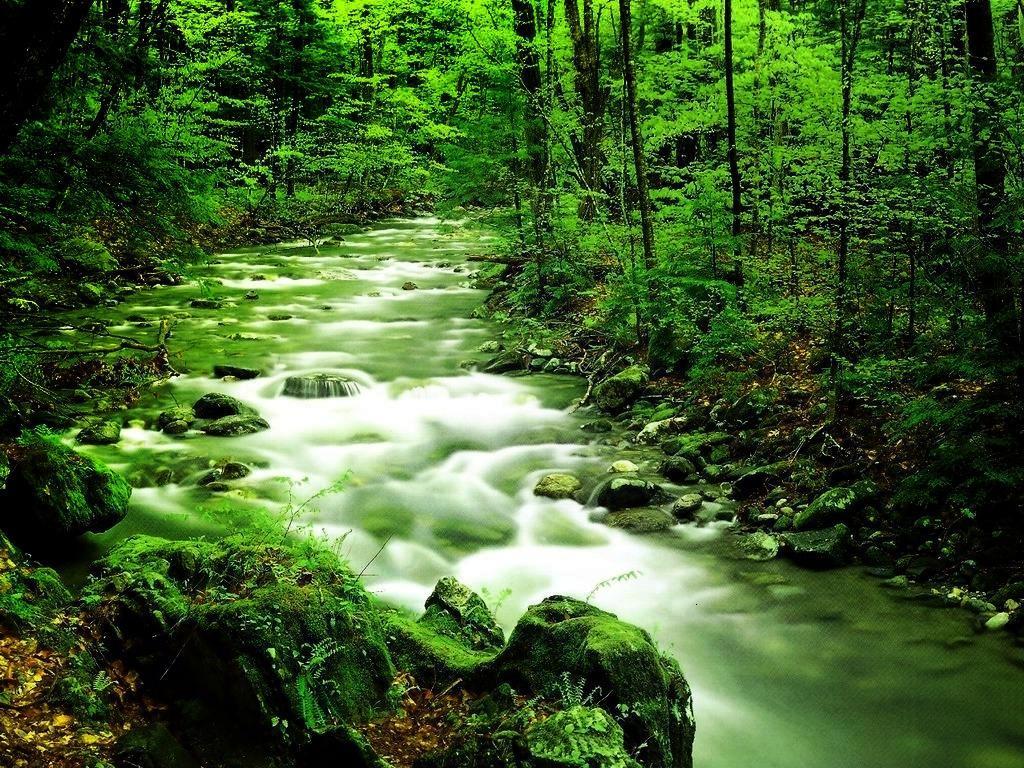 صورة اجمل صور مناظر طبيعيه 3819 8